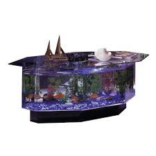 midwest tropical 680 stretched octagon aquarium coffee table