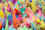 7 awesome HOLI party ideas | White Massif