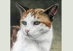 Peinture à l\u0026#39;huile réalisée par une artiste très douée: Catherine Farvacque, ces oeuvres sont d\u0026#39;un réalisme ... - 27115_2V8158380
