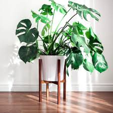 West Elm Outdoor by Large Size Of Plant Stand Awesome Modern Photos West Elm Inspired