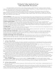 Example Of A Resume Summary Statement   Resume Summary Statement       Cv Summary