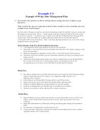 Starting A Business Plan Template Sample Business Plan For Sales
