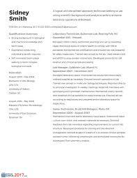 Apple Retail Resume It Resume Sample Information Technology It Job Resume Sample Pg1