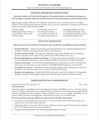 Best It Resume Sample by 20 Best It Resume Samples Images On Pinterest Free Resume