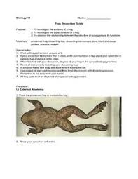 Frog Dissection Lesson Plans  amp  Worksheets Reviewed by Teachers Lesson Planet Frog Dissection Guide