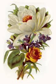 247 best clip art images on pinterest vintage flowers flowers