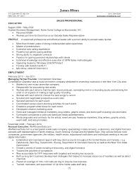 Car Sales Consultant Job Description Resume by Car Salesman Resume Samples