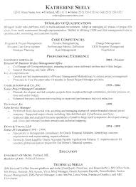 Resume Examples  Examples of a Good Resume with Summary of     Job Interview Site com Resume Professional Summary Examples Resume Accomplishments       job summary examples for resumes