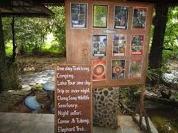 best price on tree top river huts in khao sok suratthani reviews