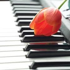 夜的钢琴曲【原创】 - 夫一 - 夫一1213@的博客