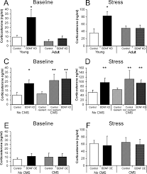 resilience to chronic stress is mediated by hippocampal brain