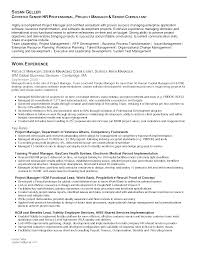 Resume Verbiage Sample Resume For Business Manager Free Resume Example And