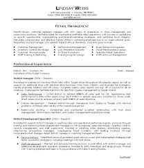 Resume Summary Examples Customer Service by Summary Example For Resume Executive Summary Example Resume