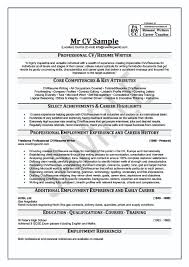 Professional Resume Writing Service  executive resume writing     professional resumes writers   Template   professional resume writing service