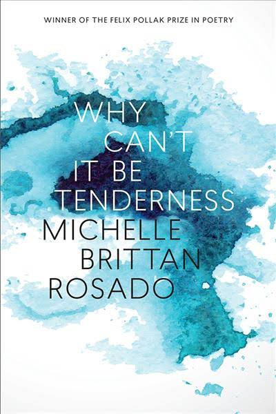 Why Can't It Be Tenderness (Wisconsin Poetry Series) by Michelle Brittan Rosado