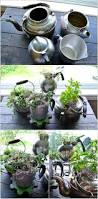 10 cool diy ideas to grow an indoor herb garden