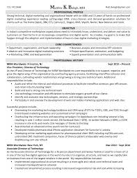 Brand Marketing Manager Resume   resume example customer service