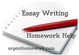 help writing an essay FAMU Online