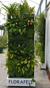 Vertical Garden Vegetables by 10 Best Interior Work Greenwall Images On Pinterest Vertical