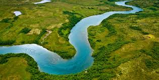 Image result for river