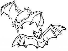 coloring page of a bat aecost net aecost net