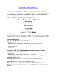 standard resume format for freshers free resume templates it template examples cio within 89 cool 89 cool resume format for word free templates