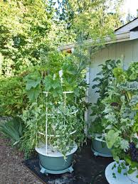 Vertical Garden Vegetables by Vertical Gardening U2013 Growing Plants Growing People