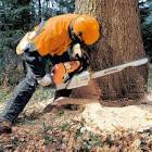 stihl 088 magnum chainsaw