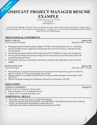 Construction Management Resume Examples by Project Manager Resume Examples Project Manager Resume Example