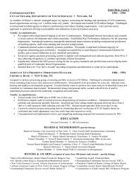 Director Of Operations Resume Sample by Ceo Chief Executive Officer Resume