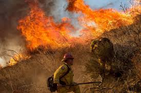 Wildfire Containment by Crews Fight To Contain California U0027s Blue Cut Wildfire Nbc News