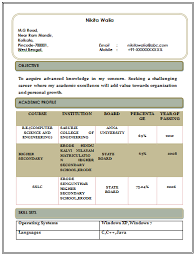 free professional resume writers diaster   Resume And Cover Letters Professional Resume Format For Ca   High School Graduate Resume     Professional Resume Format