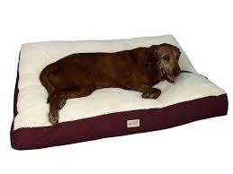 nice dog beds for large dogs u2014 jen u0026 joes design dog beds for