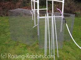 rabbit hutch plans pvc outdoor rabbit hutch set up