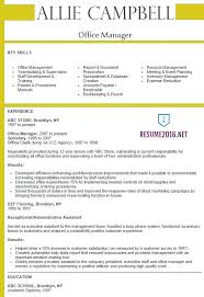 Medical Office Assistant Resume Examples by Download Office Manager Resume Example Haadyaooverbayresort Com