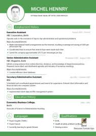Examples Of Resumes   Sample Resume Formats Free Download Essay