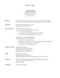 Hospital Resume  Hospital Administrator Resume Sample