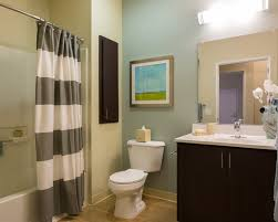 Decorating A Rental Home Apartment Bathroom Decorating Ideas Home Design Ideas Rental