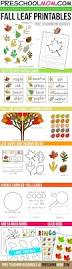 Halloween Preschool Printables 74 Best October Activities Images On Pinterest Halloween