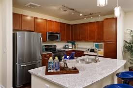 Kitchen Counter Designs by Kitchen Attractive Kitchen Counter Design Ideas With Black Metal