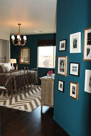 Best  Peacock Blue Bedroom Ideas Only On Pinterest Animal - Turquoise paint for bedroom
