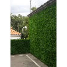 greensmart decor 20 in x 20 in artificial maya wall panels set