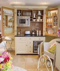 Mini Kitchen Cabinet Furniture Fascinating Kitchen Storage Cabinets Presenting