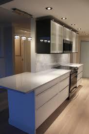 Condo Kitchen Remodel Ideas Condo Kitchen Renovations Kitchen Design Ideas And Photos For