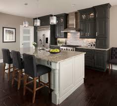 Kitchen Maid Cabinets by Kitchen Maid Cabinets Transitional With Eat In Freestanding Gas