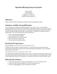 Qualifications Resume Example by Resume Summary Examples Executive Summary Resume Examples Summary