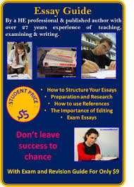 Cheap professional essay writers