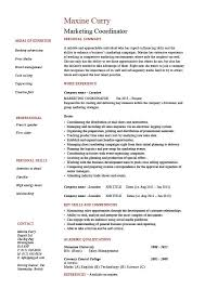Example For Resume by Wonderful Objective Example For Resume 33 In Resume Templates With
