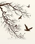 Bare Tree Branch 8 x 10 Print Flying Birds by NaturesHeavenlyArt