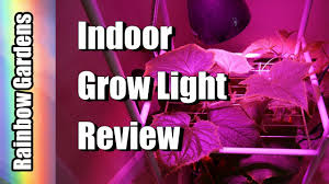 15 watt indoor led vegetative grow light review u0026 cucumber tower